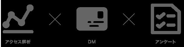 (アクセス解析×DM×アンケート)